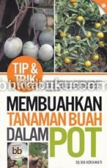 Tip & Trik Membuahkan Tanaman Buah Dalam Pot
