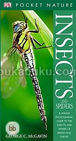 Insects (Pocket Nature)